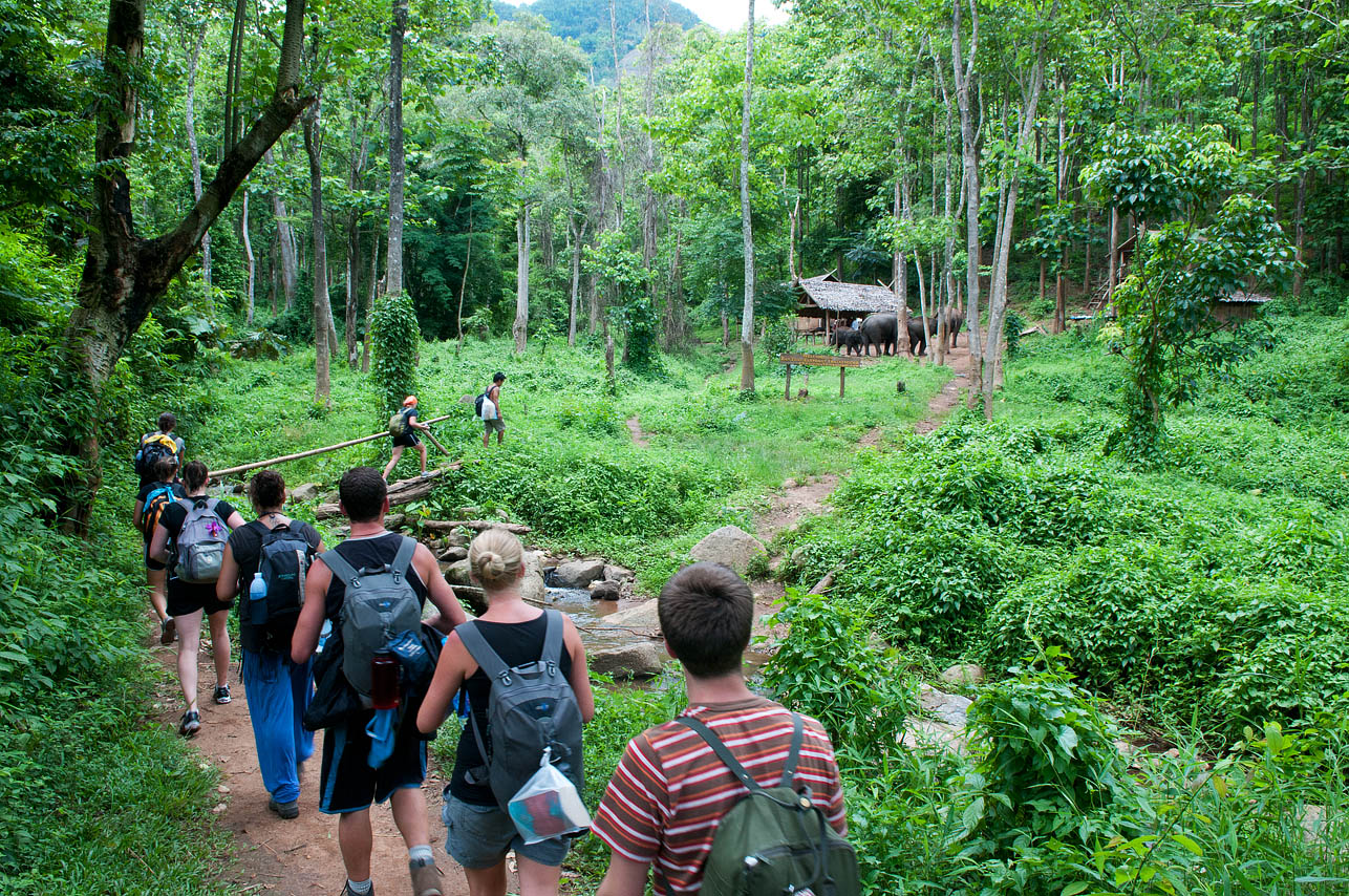 treck backpacker chiang mai